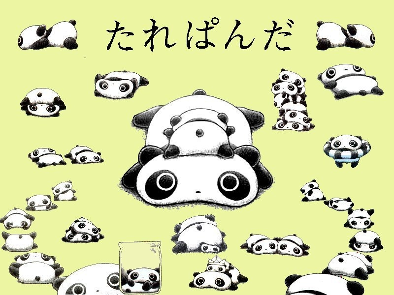 Chibi Panda Wallpapers Wapmiacom
