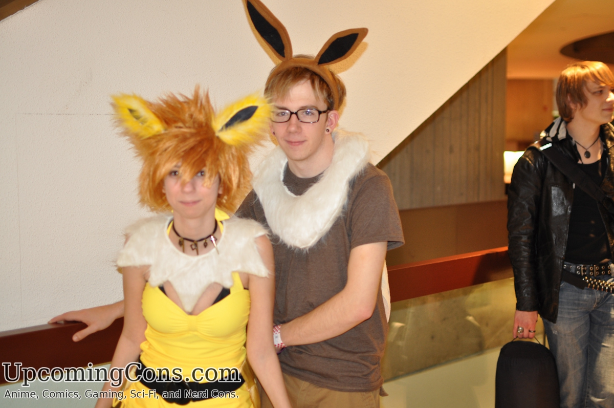 Eevee and Jolteon From Pokemon.