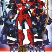 Ronnin Warriors