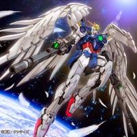 wingsoffreedom