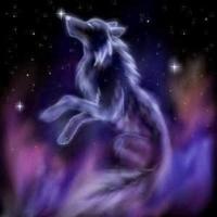 aurorawolfus