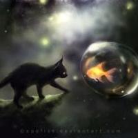 kittydragon52