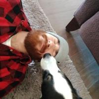 cosmodog