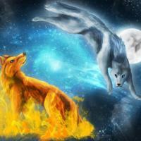 wolfey3301