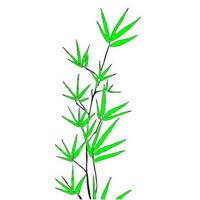 bambuh