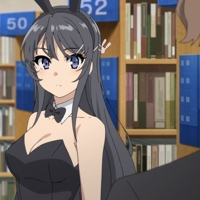 Rascal Does Not Dream Of Bunny Girl Senpai